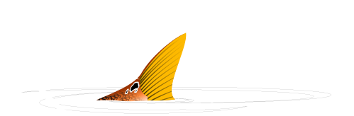 RedZone Performace Fishing Apparel
